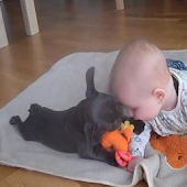 Cute Babies And Puppies Videos