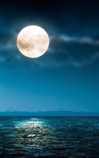 月明かりライブ壁紙