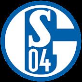 Ball 3D FC Schalke 04 LWP