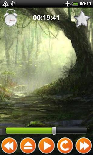 叢林的聲音