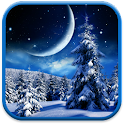 Winter Night Wallpaper icon