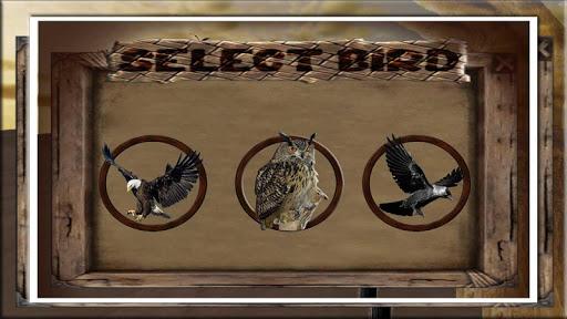 鳥 獵人 非洲