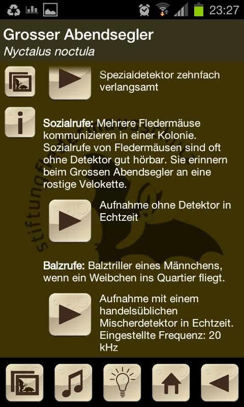 Swiss Bats - screenshot