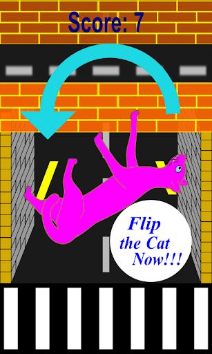 Dumb Cats