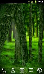 RealDepth Forest LWP v1.1.1