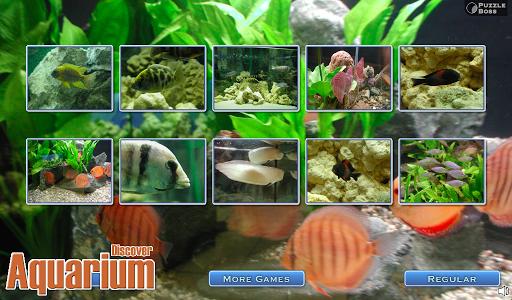Discover: Aquarium