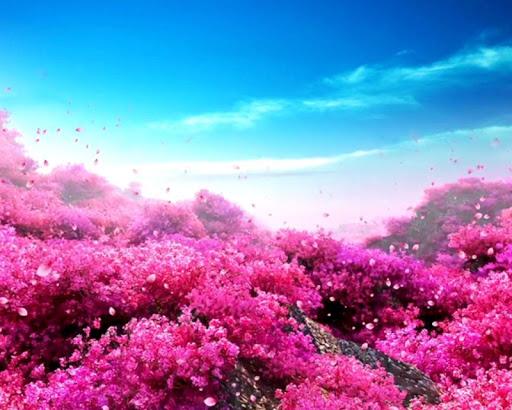桃花林動態壁紙