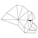 고릴라AR icon