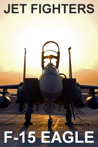 Jet Fighters: F-15 Eagle FREE - screenshot