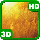 Nature Sunset Field icon