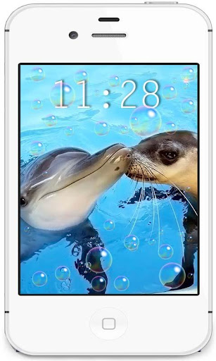 Dolphins Beach live wallpaper