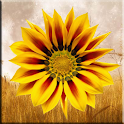 Fall Harvest Flowers icon