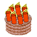 TKBirthdayReminder icon