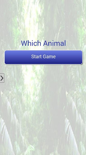 Which Animal