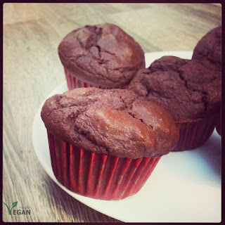 Muffin Cacao Recipes.