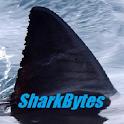 Shark Bytes/ no ads icon