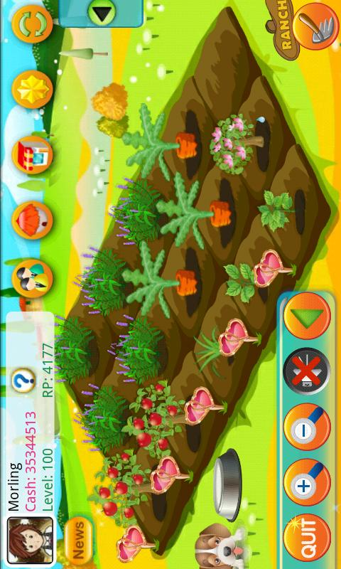 Papaya Farm - screenshot