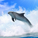 Dolphins 3D. Live Wallpaper. icon