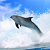 Dolphins 3D. Live wallpaper.