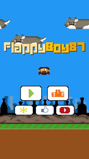 FlappyBoy87