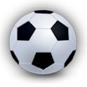 For Interests In Soccer logo