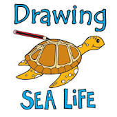 Drawing Sea Creatures