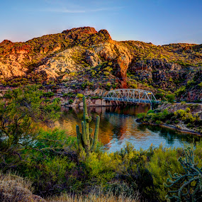 Canyon Lake Bridge by Marilyn Magnuson - Landscapes Deserts ( water, desert, reflections, bridges, hill country, cactus )