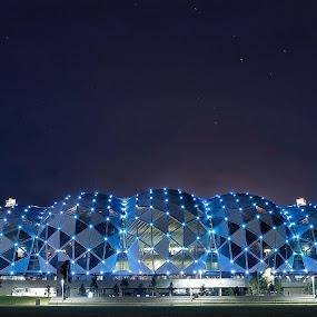 Stadium by Anna Gottlieb - City,  Street & Park  Night