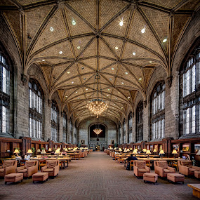 Harper Memorial Library by John Williams - Buildings & Architecture Public & Historical ( unv chicago )