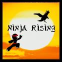 Ninja Rising icon