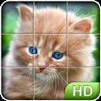 Tile Puzzle: Cute Kittens