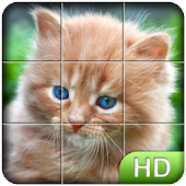 Tile Puzzle: Cute Kittens