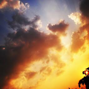 Light Shadow by Arif Hossain - Landscapes Sunsets & Sunrises (  )