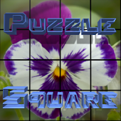 PuzzleSquare - Pack 1