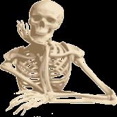 Learn the bones