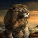 The Lion Live Wallpaper icon