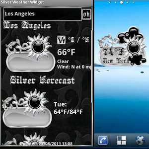 Silver  Weather Widget