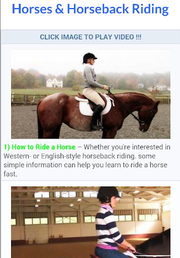 Horses Horseback Riding