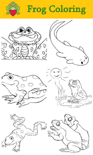 Frog Coloring For Kids