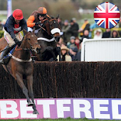 Betfred Cheltenham Horse Races