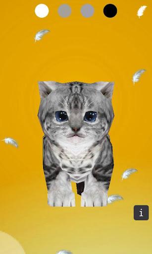 3D Cute Kitten Cat Sounds
