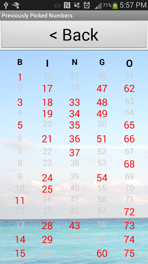 Bingo Number Generator - screenshot