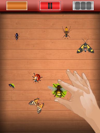 Smash and Kill Ant