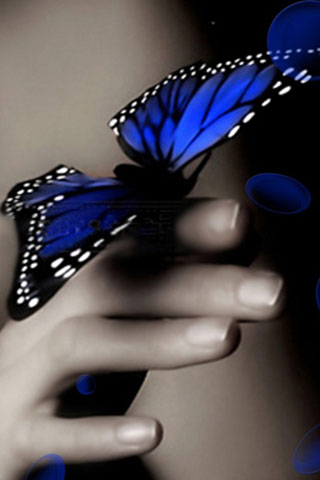 3D Butterfly wallpaper - screenshot