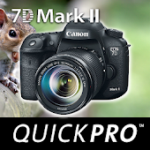 Guide to Canon 7D Mark II