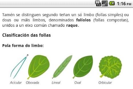 Guía de árboles- screenshot thumbnail