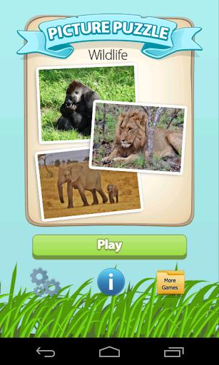 Picture Puzzle Wild Animals