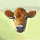 Bulls & Cows icon