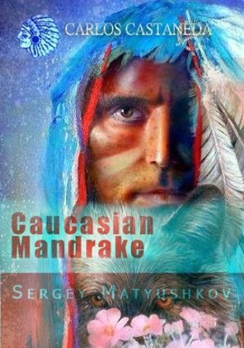 Кавказская Мандрагора