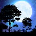Nightfall Live Wallpaper Free download
